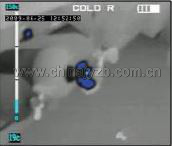 法国Leader TIC Bi-Ocular红外热成像仪冷色模式